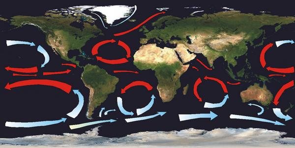 Ocean gyres currents blank